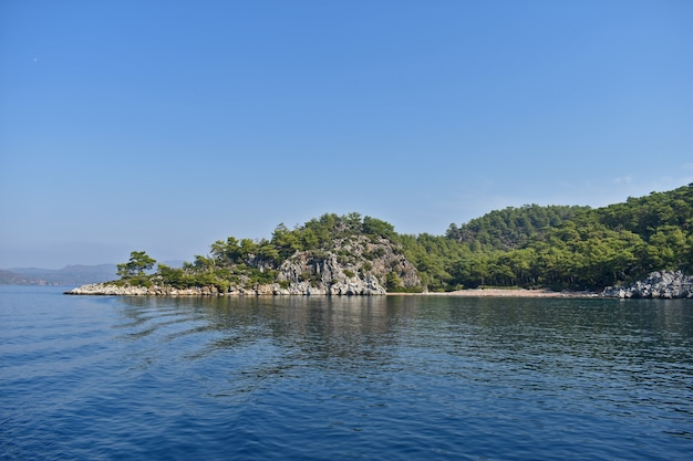 Скалы и деревья на берегу моря