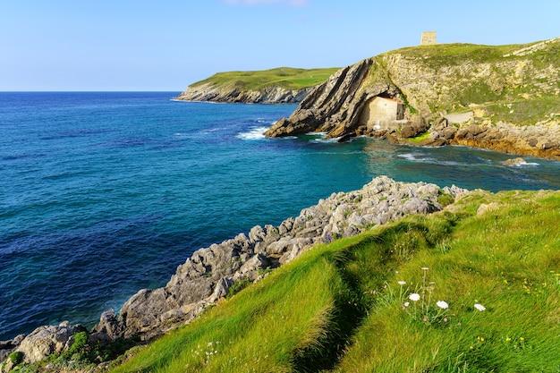 Скалы с видом на море с лугами из зеленой травы и цветов летом