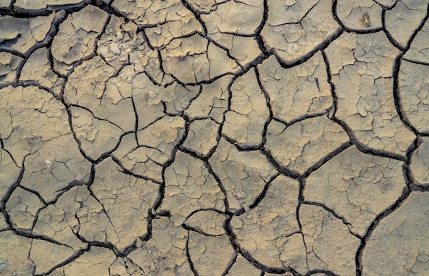 기후 변화와 가뭄 토지. 물 위기. 건조한 기후. 토양에 균열이 생깁니다. 지구 온난화. 환경 문제. 자연 재해. 마른 토양 질감 배경입니다.