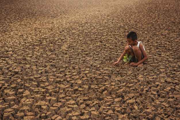 Climate change childrens hands planting tree on dry cracked land environment conservation and stop global warming concept