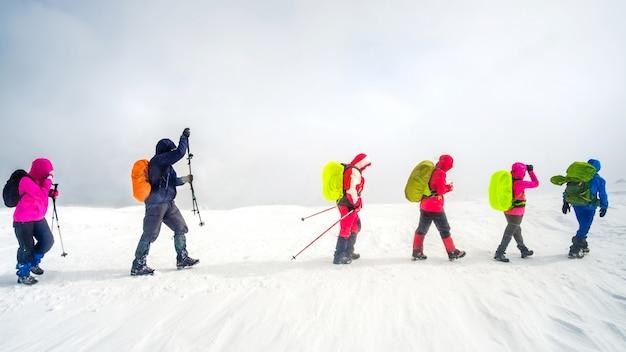 登山者が山でハイキング