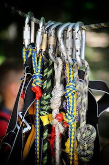 森の中のロープでカラビナのスポーツクライミング画像