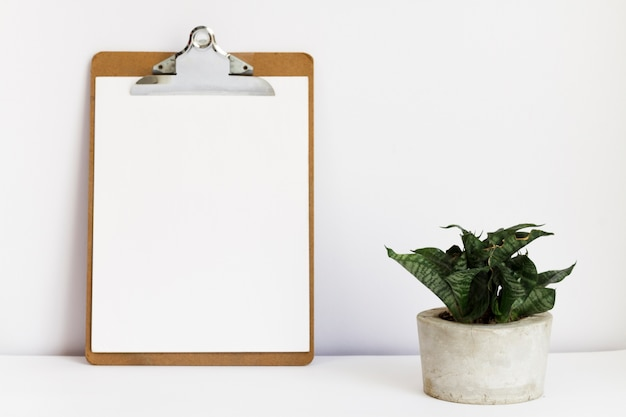 Clipboard next to potted plant