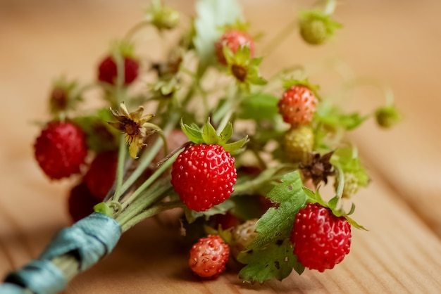 Cloce up bunch of wild strawberry twigs with red berries on wooden table surface