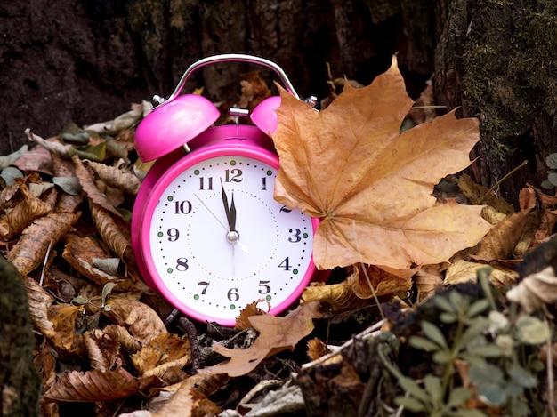 木の下の森の乾燥した茶色の葉の間で時計。秋の時間