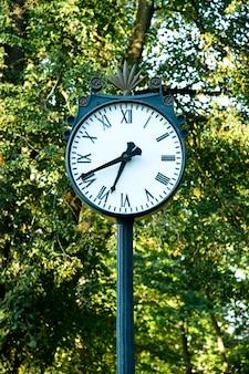 Часы в зеленом парке на открытом воздухе возле цветников
