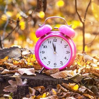 晴天時の秋の森を背景に時計。秋の時間_