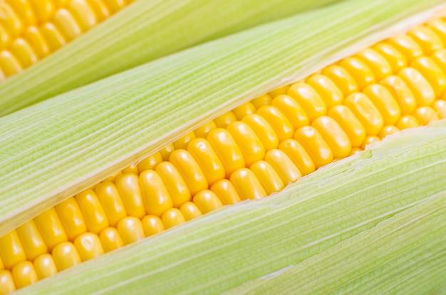 新鮮なトウモロコシ、有機野菜、食品のコンセプトのuoを閉じる