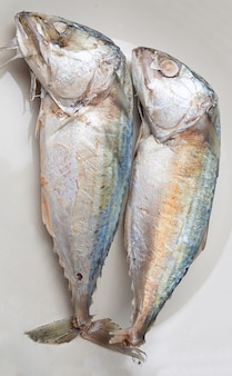Close up of 2 mackerel on a plate, mackerel is a small fish that is popular for cooking, mackerel meat has many nutrients. both linoleic acid and cocosahecinoic acid (dha).