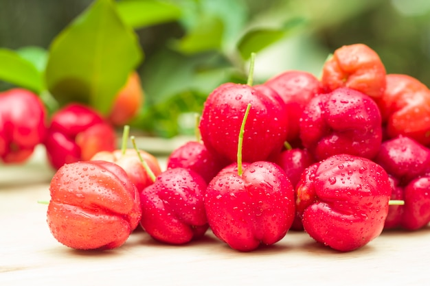 Close up of acerola cherry
