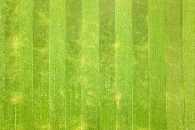 Крупным планом вид с воздуха на поверхность зеленой свежескошенной травы на футбольном стадионе летом.