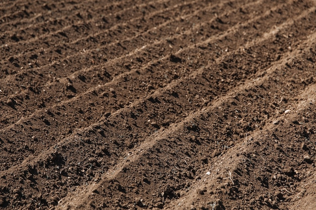 Close up on agriculture soil before sowing