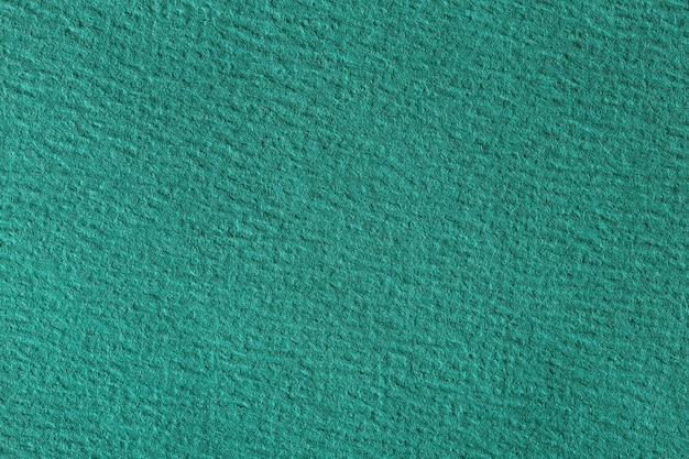 濃い緑色の画用紙の別名マクロ撮影をクローズアップします。高解像度の写真。