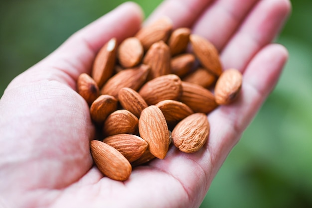 Close up almond nuts natural protein food and for snack - almonds in hand nature green background