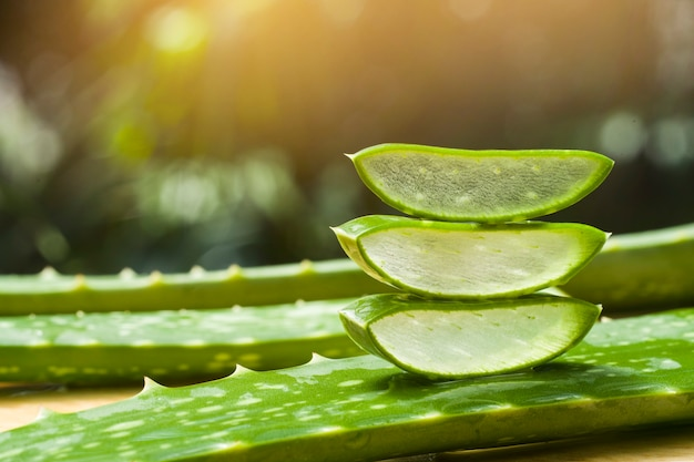 Close up on aloe vera slices pile details