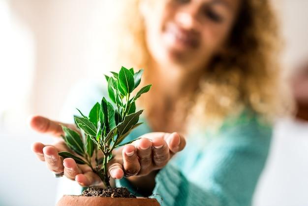 Крупным планом и портрет женщины, заботящейся о небольшом растении внутри дома он - растущее растение