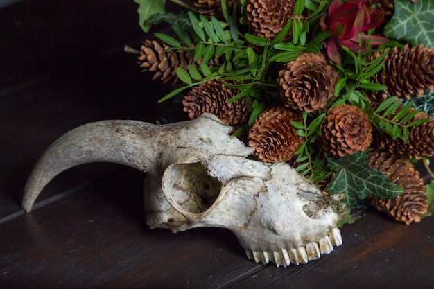 Close-up of an animal skull next to a bouquet on a wooden tabletop, selective focus