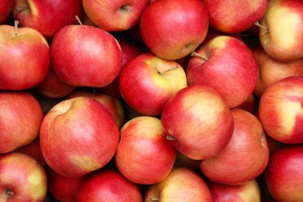 근접 사과, 빨간 사과 과일입니다.
