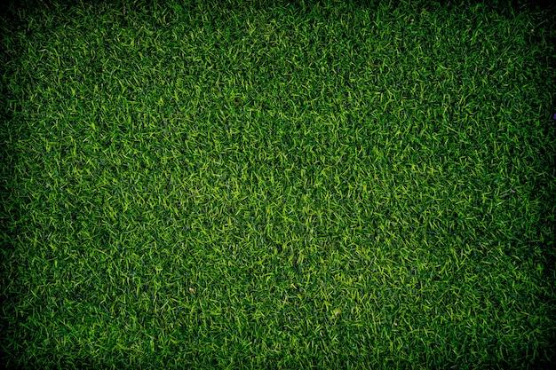 인공 잔디 배경 가까이