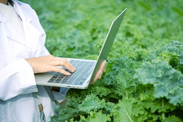 クローズアップ、有機農場でケール種の野菜を研究するためにラップトップを使用しているアジアの美しいバイオテクノロジー。