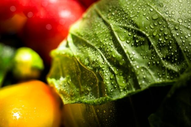 Крупным планом ассортимент свежих осенних овощей