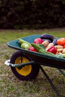 Close-up assortment of vegetables in wheelbarrow