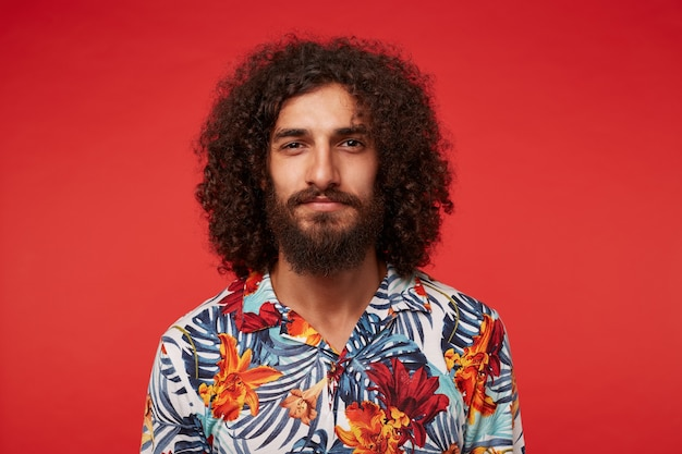 Close-up of attractive young brunette male with lush beard and curly hair looking positively to camera and smiling slightly, keeping lips folded while posing against red background