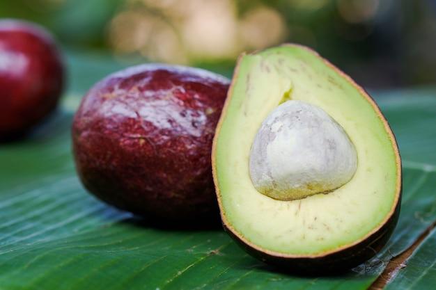 클로즈업 아보카도는 건강 식품의 개념을 잎에 반으로 합니다.