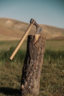 山のログで斧を閉じる