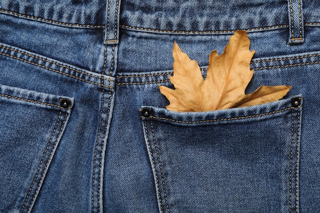 Close up on back of jeans with leaf in pocket