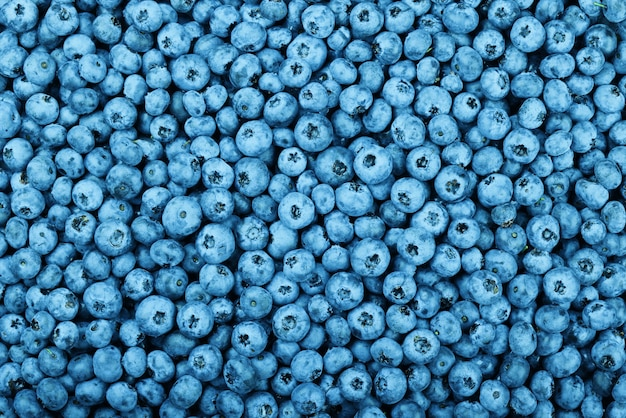 Close up background pattern of fresh ripe blueberry berries, elevated top view, directly above