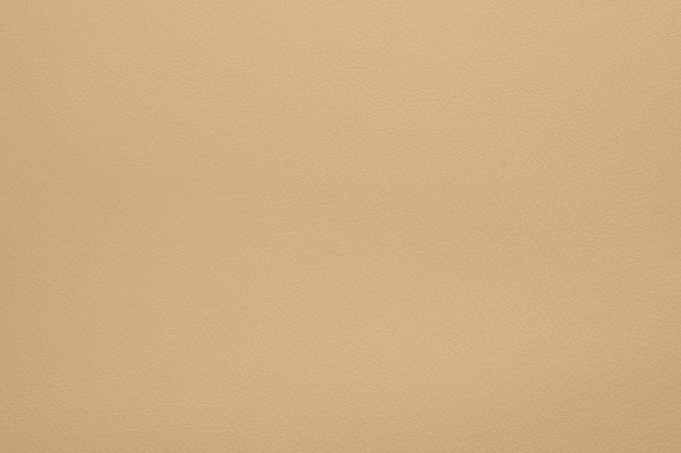 Close up background texture pattern of pastel beige natural leather grain, directly above