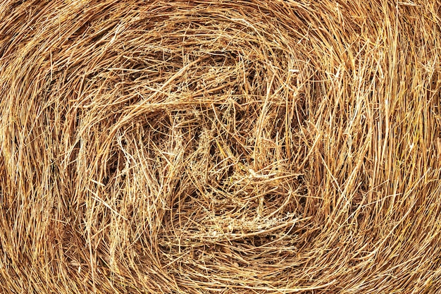 Close up of bales of hay spiral