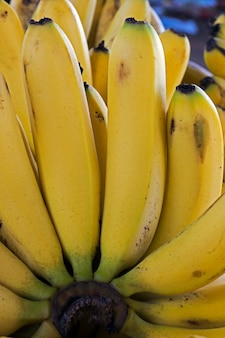 Close-up of banana bunch on street market stall