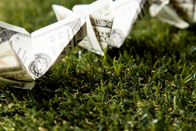 Close-up of banknotes on grass