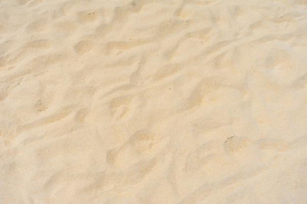 모래 해변 배경 가까이