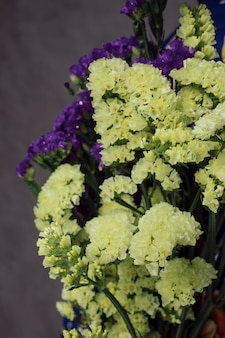 Close-up of beautiful yellow and purple limonium flowers against gray wall