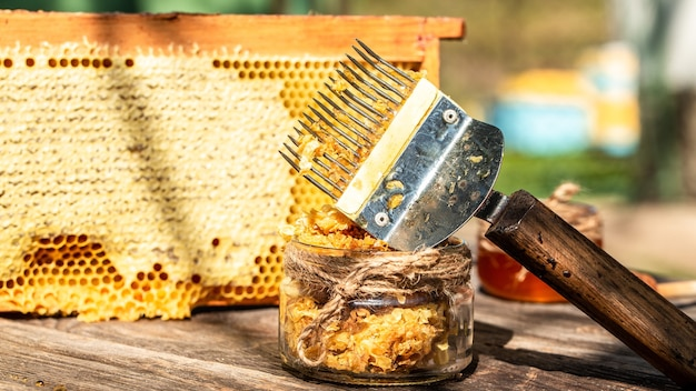 Крупным планом пчеловод распечатывает соты специальной вилкой для пчеловодства