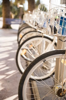 Close-up of bicycles in a row parked for rent