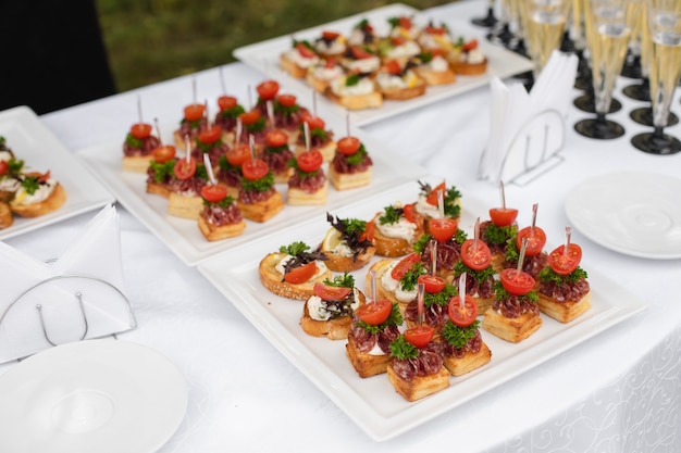 Close-up big plate with serving snack canapes