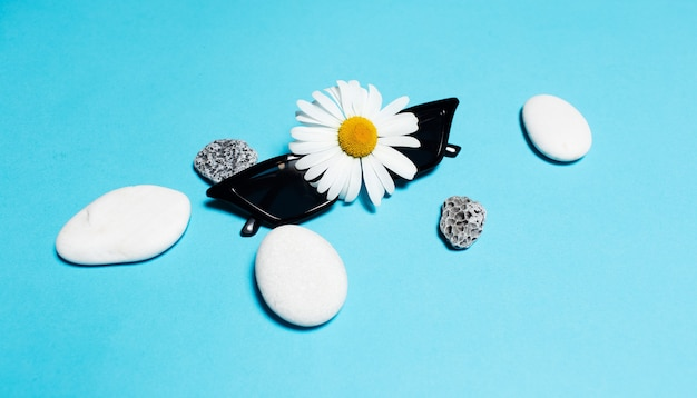 Close-up of black sunglasses near white and grey stones and chamomile flower  background.