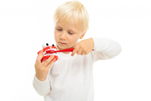 Close-up of a blond male child with a toy in the form of a tooth jaw and a white toothbrush on a white background