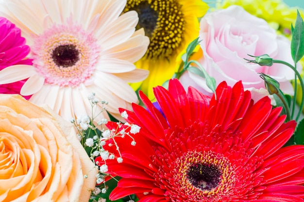 Close-up of blooming flowers gerbera; rose and sunflower