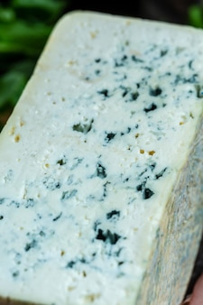 Close up blue cheese roquefort gorgonzola or dorblu stilton dairy product made from goat sheep or cow milk roquefort, cambozola, food recipe background