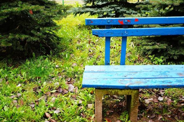 Primo piano di una panchina del parco blu