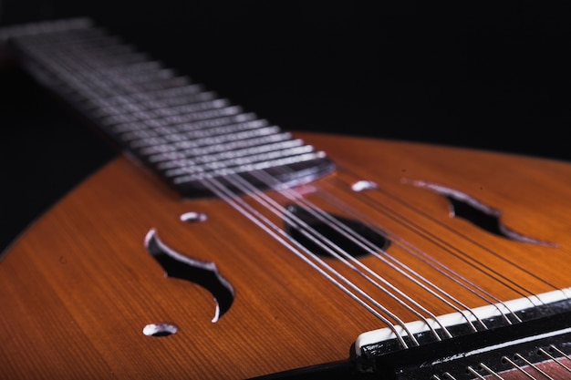 Close-up body and neck of lute