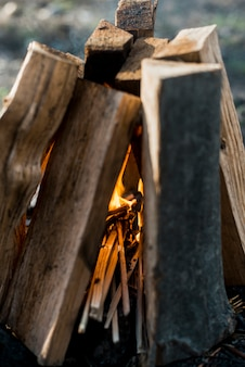Close-up bonfire outdoor