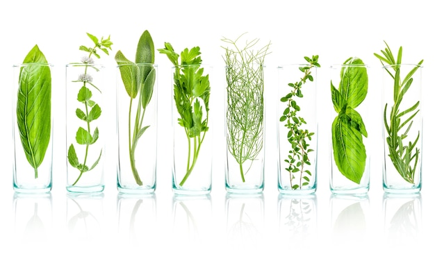 Close up bottles of essential oils with fresh herbs isolated on white background.