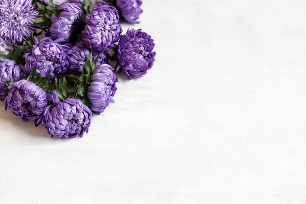 Primo piano di un mazzo di crisantemi blu freschi su sfondo bianco, copia dello spazio.