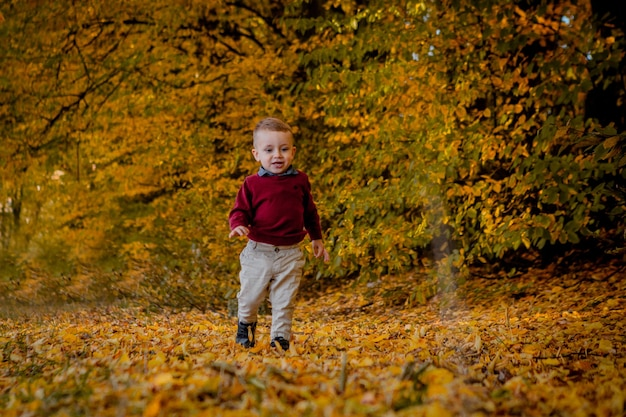 Close up on boy running through the autumn park